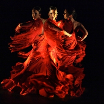 Flamenco Troupe